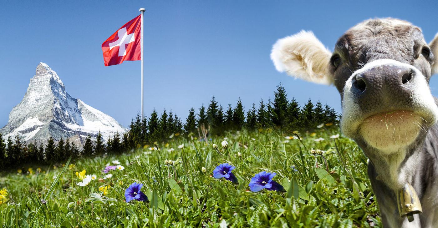 Job General Practitioner Switzerland