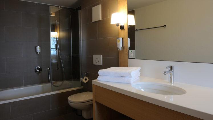 Hotel_des_Alpes